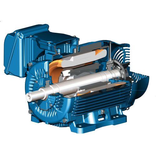 Motores Electricos CA